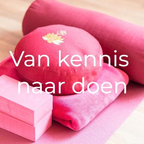 Blog: VAN KENNIS NAAR DOEN.